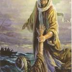 Petru -mare